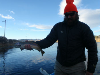 Business Sales and Fly Fishing
