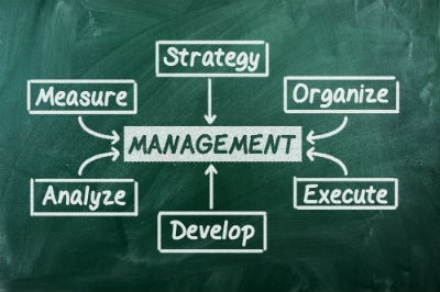 Small Business Management Styles