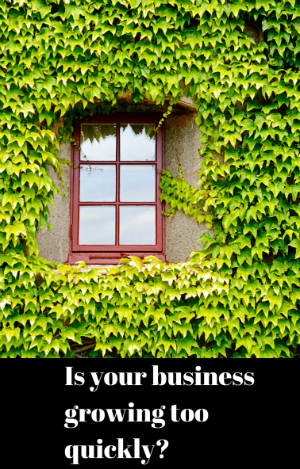 How to Grow Your Small Business Out of Business