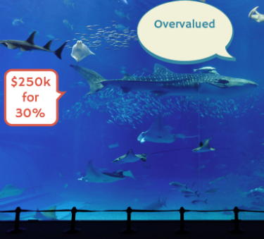 Shark Tank Small Business Lessons Will Help You Grow