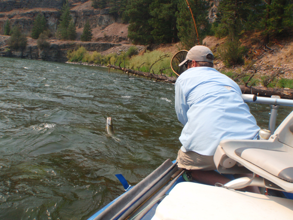 Does fishing help your business